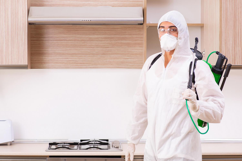 Różnice pomiędzy dezynfekcją a sprzątaniem